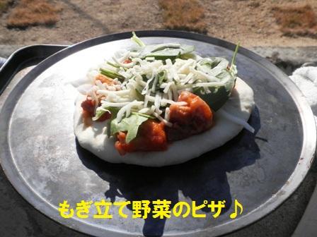 もぎ立て野菜のピザ