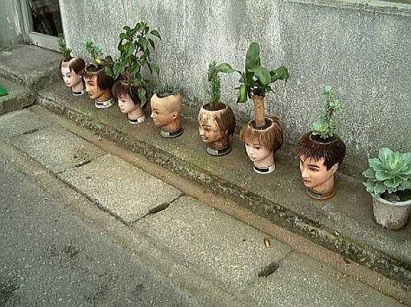 猟奇植木鉢