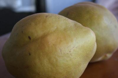 ごちごちの梨