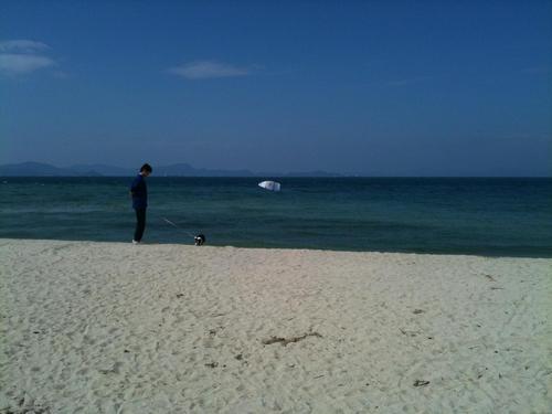 海(はじめ)