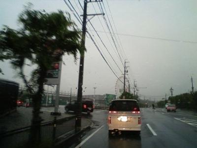 suzuka19.jpg