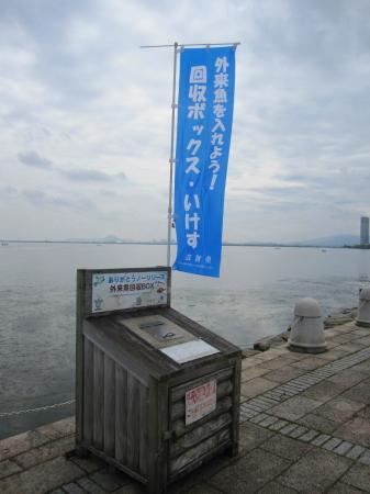 2011_06_09_08.jpg