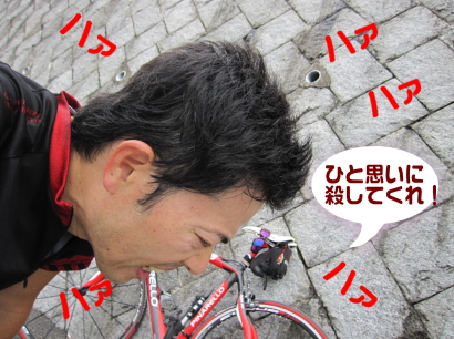 2011_06_22_02.jpg
