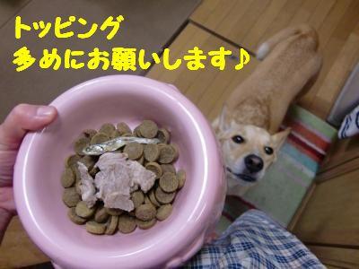CIMG0036_convert_20110714210356.jpg