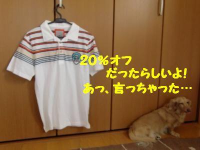 CIMG0398_convert_20110707104601.jpg