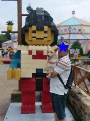 CIMG0628_convert_20110831142331.jpg