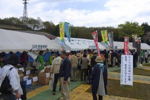 県内の野菜販売