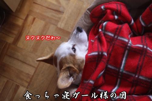 002_20091112171703.jpg