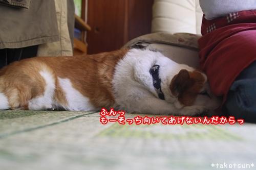 010_20091012211701.jpg