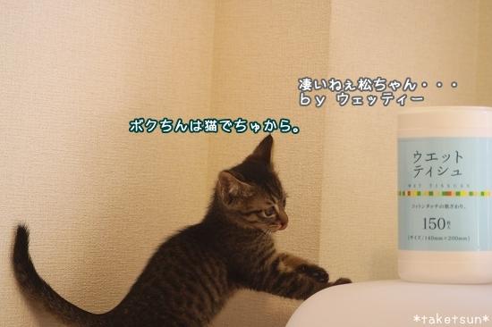 012_20090816202203.jpg