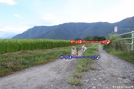 015_20090824213935.jpg