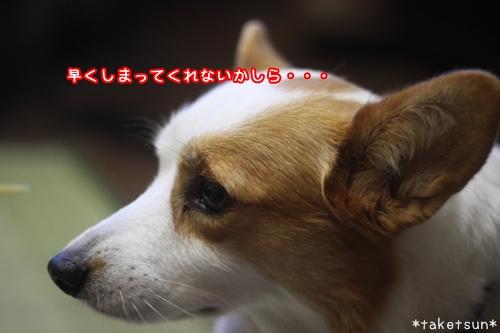022_20091009213625.jpg