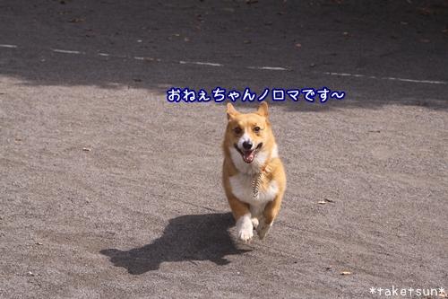 024_20091001145146.jpg