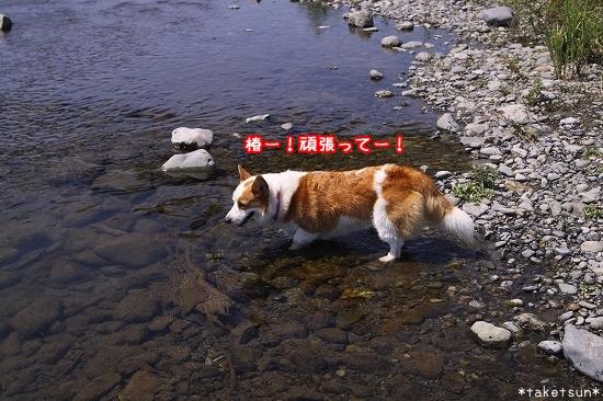 035_20090819211004.jpg