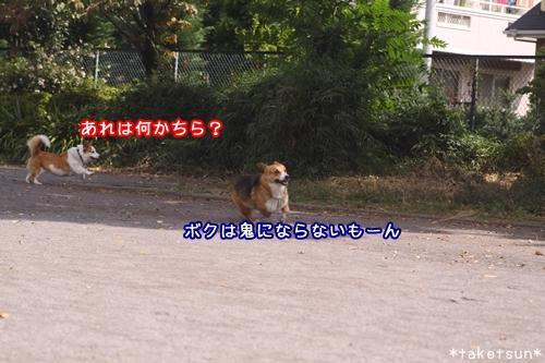040_20091001145145.jpg