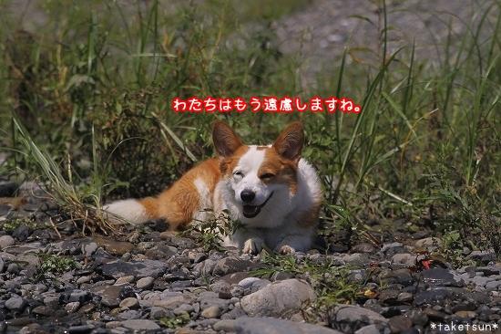 044_20090819211003.jpg