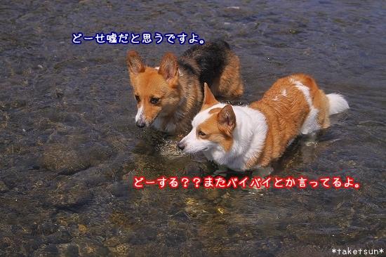045_20090819211050.jpg