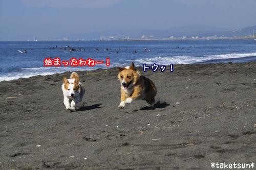 046_20090910204311.jpg