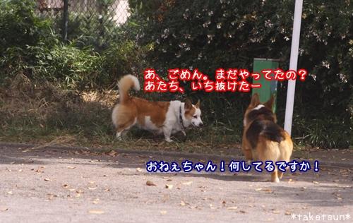 048_20091001145222.jpg