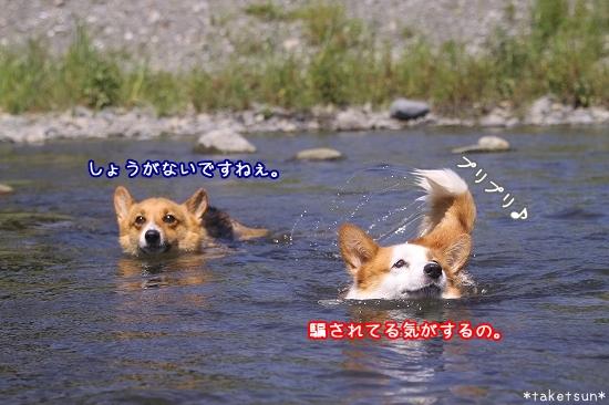052_20090819211050.jpg