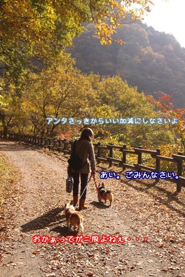 054_20091108211214.jpg