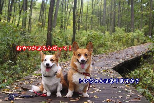 057_20091027171423.jpg
