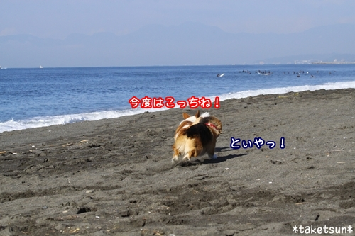 065_20090910204353.jpg