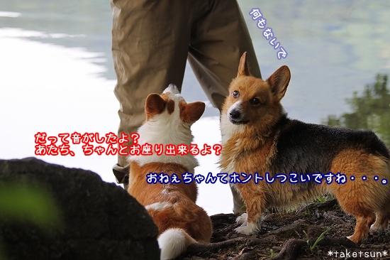 075_20090825202305.jpg