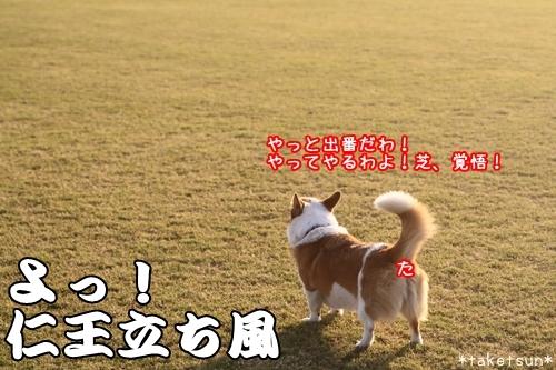 083_20091021202801.jpg