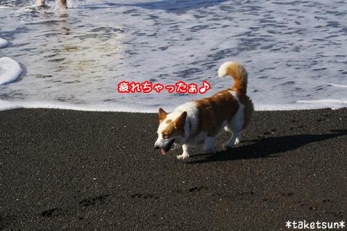088_20090910204450.jpg