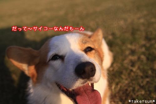 099_20091021180444.jpg