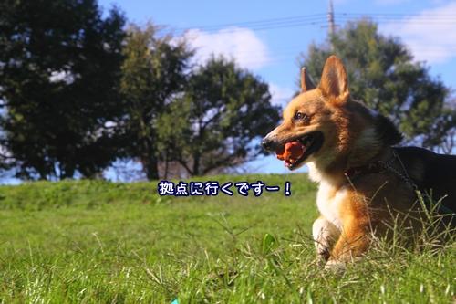 108_20091027171549.jpg