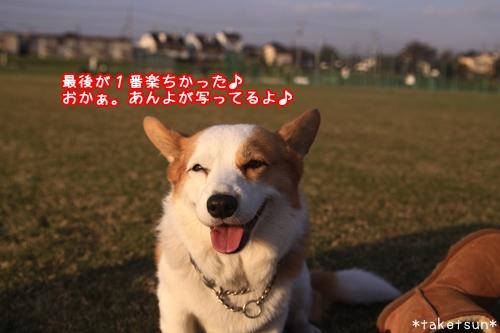 111_20091021180444.jpg