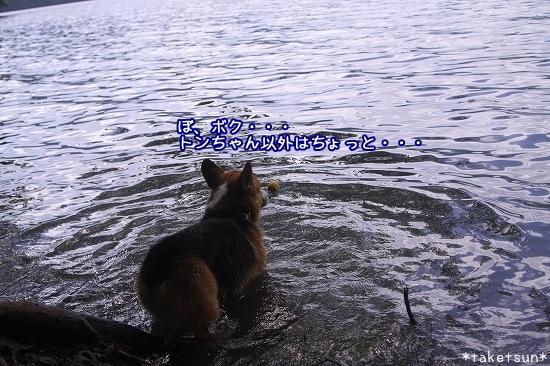 154_20090825202432.jpg