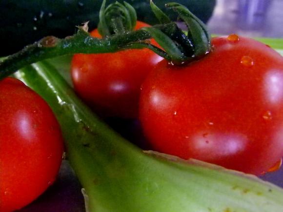 IMGP2122.jpgトマトとセロリ