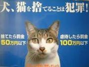 動物愛護法