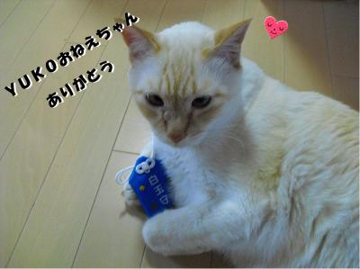 YUKOおねえちゃん、ありがとう!