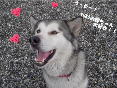 YUKOおねえちゃん、大好き!