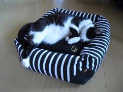 猫ベッド カナ