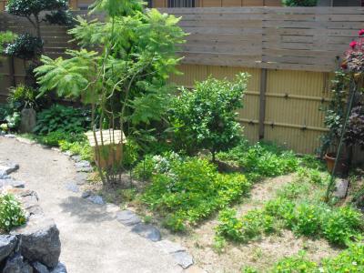 猫屋敷のジャングル