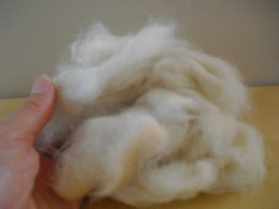 白玉の抜け毛