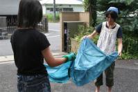 2010  8 18 藍染め 001_R