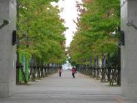 2010 10 19城西国際大学水彩風景画 008_R