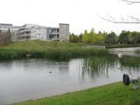 2010 10 19城西国際大学水彩風景画 003_R