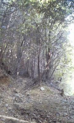 minoosan2.jpg