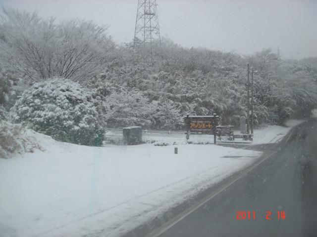 アソシエート雪
