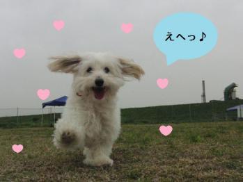 笑顔のオレオ