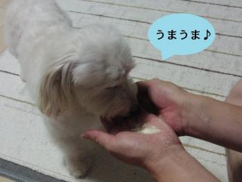 粉ミルク好き②