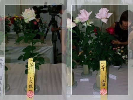 f-f日本バラ会全国大会2011.10-horz1
