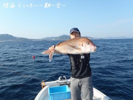 10土 マサシ鯛